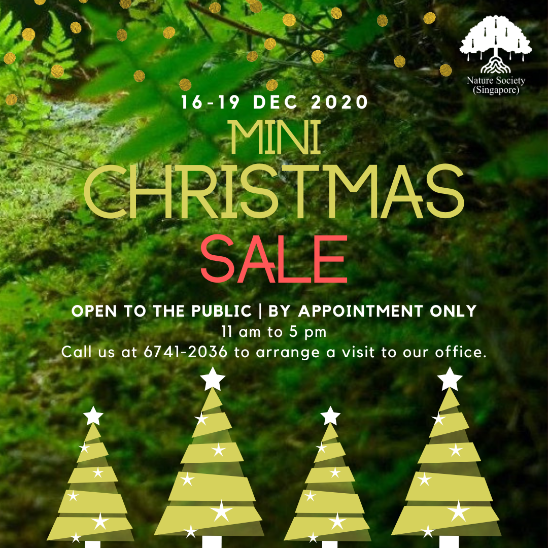 NSS mini Christmas Sale Social Media Post.png